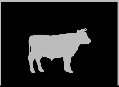 Rind & Schwein